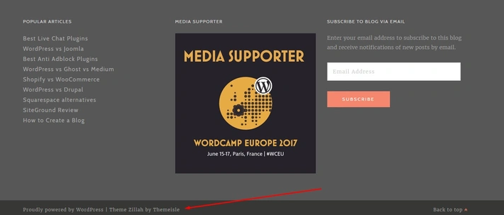 wordpress-theme-detect-footer